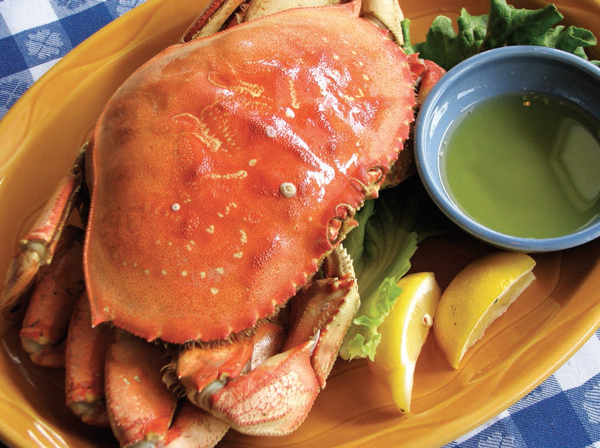 Ícone da Califórnia, o dungeness crab é celebrado na primavera  da Calífórnia