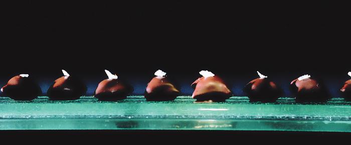 Pão de azeite de chocolate, de Ferran Adrià, em foto de Francesc Guillaumet. Foto: divulgação